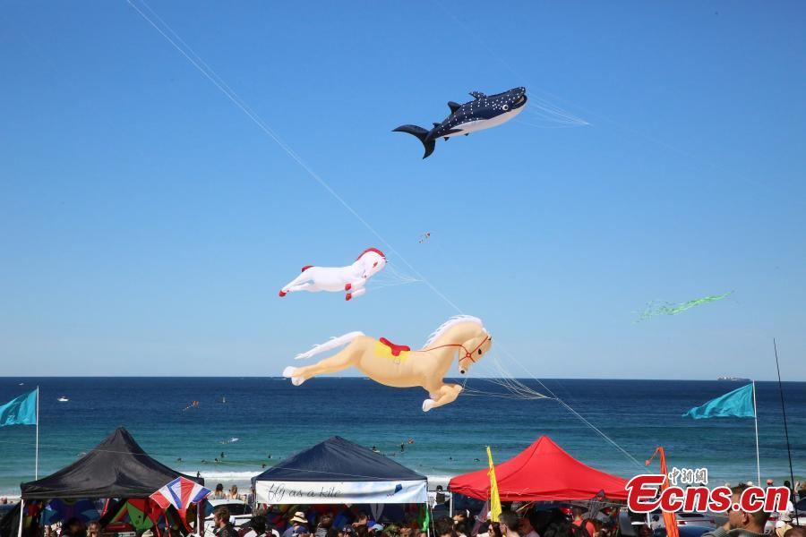 Visitors look at kites during the 40th Kite Flying Festival at Bondi Beach, Sydney, Australia, Sept. 9, 2018. (Photo: China News Service/Tao Shelan).