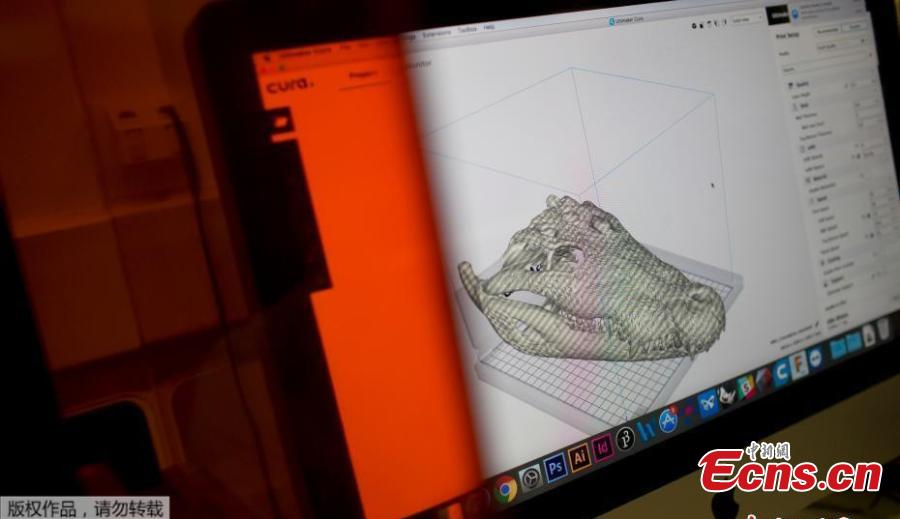 A 3D scan of a crocodile cranium, part of the collection National Museum collection, is displayed on a computer screen at the Pontifical Catholic University, in Rio de Janeiro, Brazil, Sept. 5, 2018. About 300 pieces of the Brazil\'s National Museum that were scanned and some printed in 3D could help to rebuild part of the heritage lost in the fire this weekend. Since 2000, researchers at the PUC worked together with the museum, scanning and printing some of the most important objects of the institution. (Photo/Agencies)