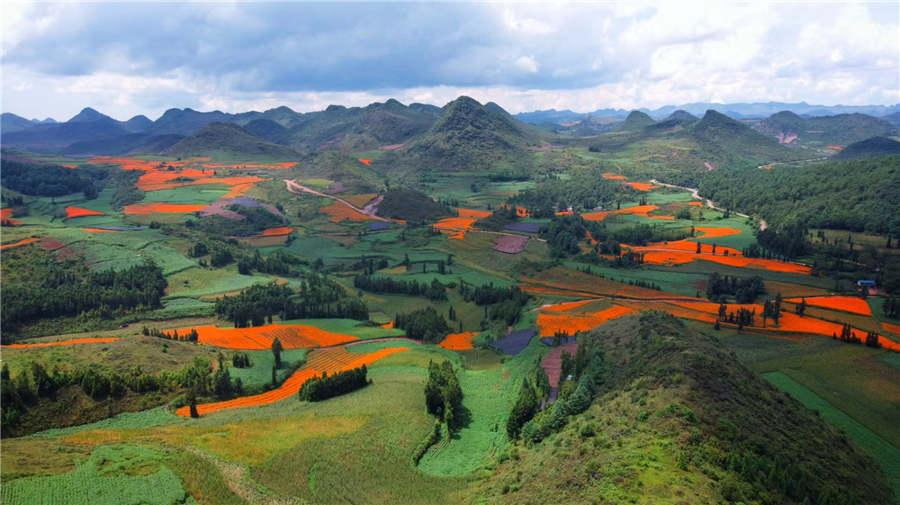 A view of Shede Meadow in Yunnan Province. (Photo provided to chinadaily.com.cn) Recently, the Yunnan Provincial Tourism Development Commission and online travel website Lotour.com organized a tour, inviting tourism experts from Beijing, Shanghai, Guangzhou, Xiamen and Nanjing to experience the charm of Yunnan province.  These experts explored more than 20 scenic spots in seven regions of the province in 168 hours, promoting tourism in Yunnan across three themed travel routes: legendary ancient towns, splendid fairyland scenery and exotic cultures.