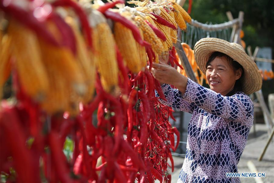 A villager airs chillies and corns at Chengkan Ancient Village in the city of Huangshan, east China\'s Anhui Province, on Sept. 12, 2018. (Xinhua/Shi Yalei)