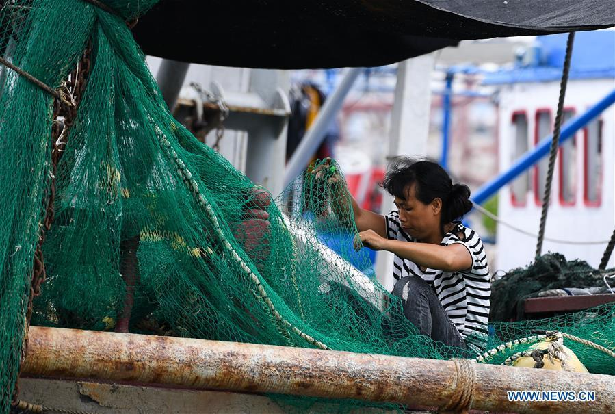 A woman arranges fishing nets at a fishing port in Sanya, south China\'s Hainan Province, Sept. 14, 2018. Mangkhut, the 22nd typhoon this year, is expected to land in south China\'s Guangdong and Hainan provinces on the night of Sept. 16. (Xinhua/Yang Guanyu)