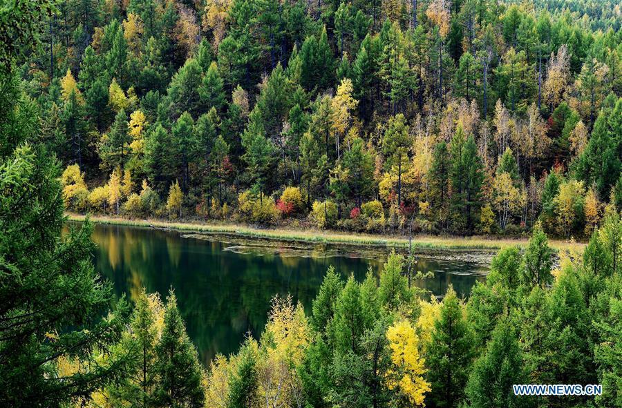 Photo taken on Sept. 14, 2018 shows autumn scenery of the Tianchi Lake in Arxan, north China\'s Inner Mongolia Autonomous Region. (Xinhua/Ren Junchuan)