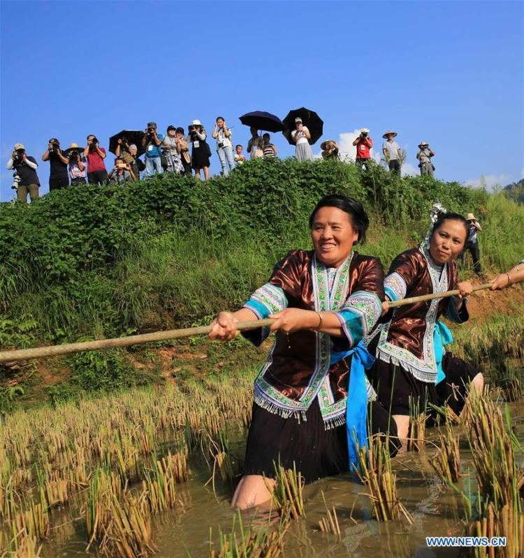 People take part in a tug-of-war game during harvest celebrations held at a village of Miao ethnic group in Gandong Township in Miao Autonomous County of Rongshui, south China\'s Guangxi Zhuang Autonomous Region, Sept. 15, 2018. (Xinhua/Long Tao)