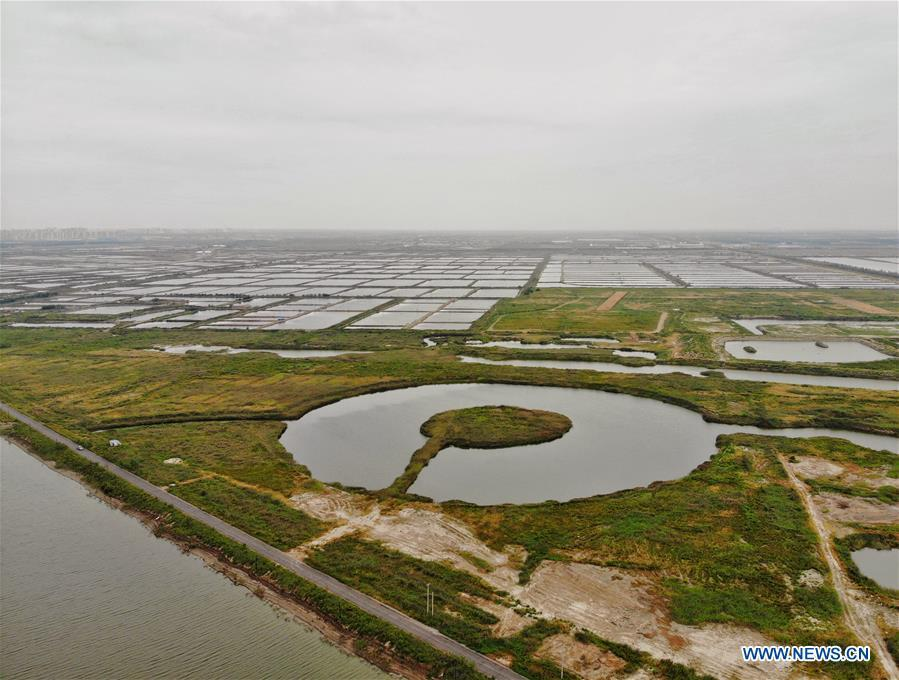 Aerial photo taken on Sept. 15, 2018 shows scenery of Caofeidian wetland and birds natural reserve in north China\'s Hebei Province. Two injured oriental white storks will be soon released into the wild upon their full recovery. The two birds were rescued by the administration of the natural reserve in October of 2017. The oriental white storks are listed as endangered species that are under first-class national protection. (Xinhua/Xing Guangli)