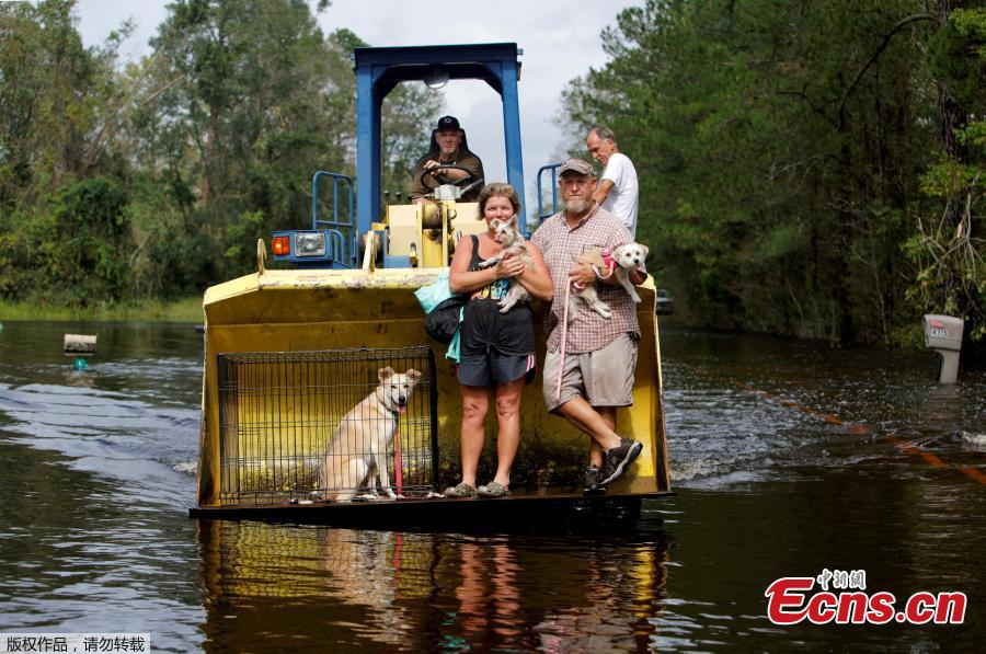 Jimmy Shackleford (74) of Burgaw transports his son Jim Shackleford and his wife Lisa, and their pets Izzy, Bella and Nala (in the cage) in the bucket of his tractor as the Northeast Cape Fear River breaks its banks during flooding after Hurricane Florence in Burgaw, North Carolina, U.S., Sept. 16, 2018. (Photo/Agencies)