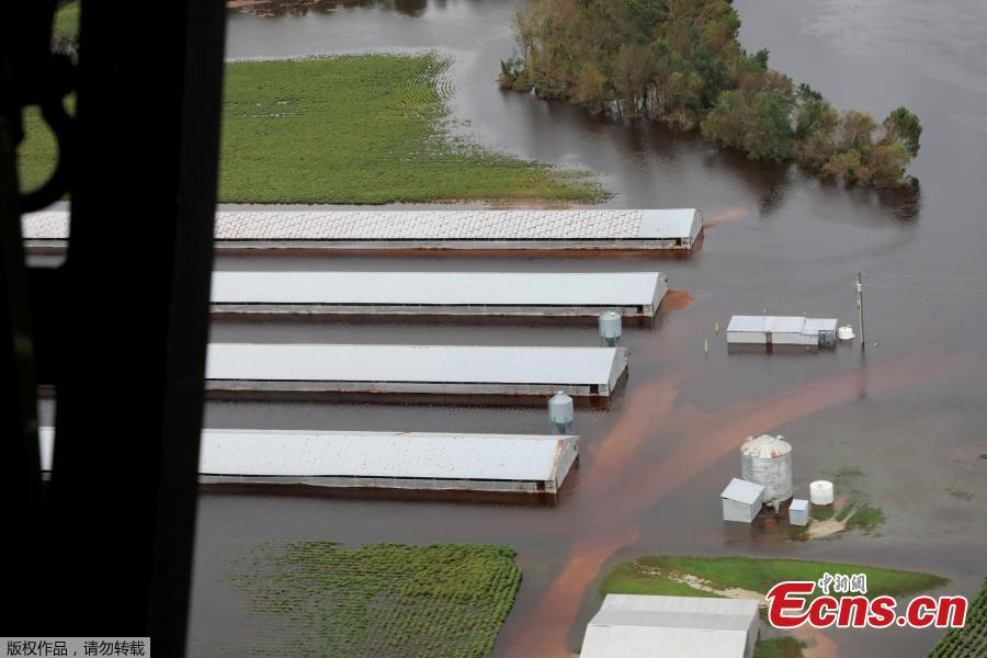 Farm buildings are inundated with floodwater from Hurricane Florence near Trenton, N.C., Sept. 16, 2018. (Photo/Agencies)