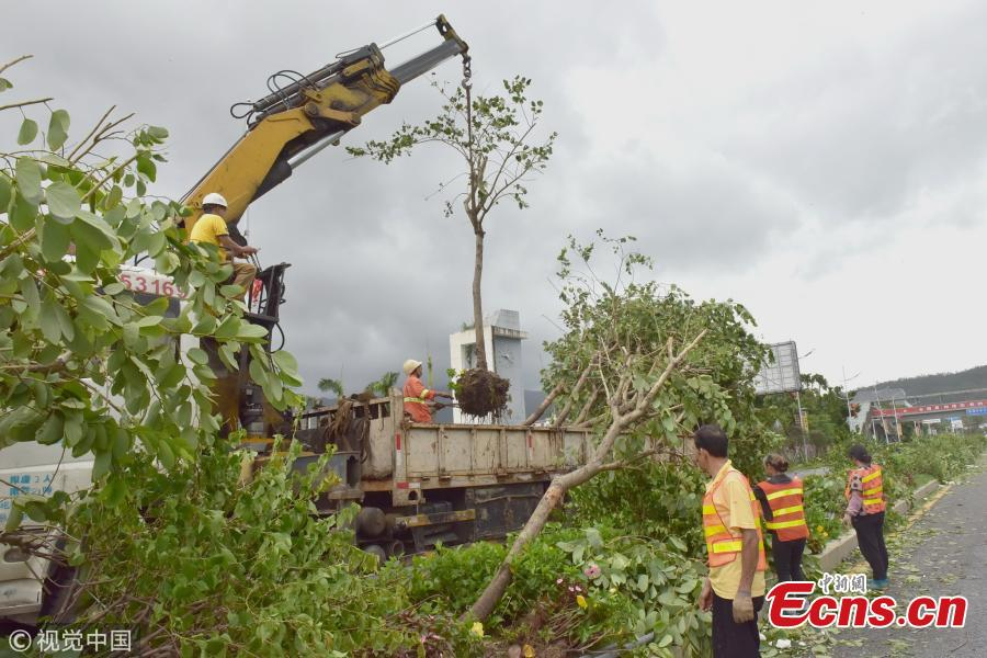 People clear trees uprooted by Super Typhoon Mangkhut in Shenzhen City, South China's Guangdong Province, Sept. 17, 2018. (Photo/VCG)