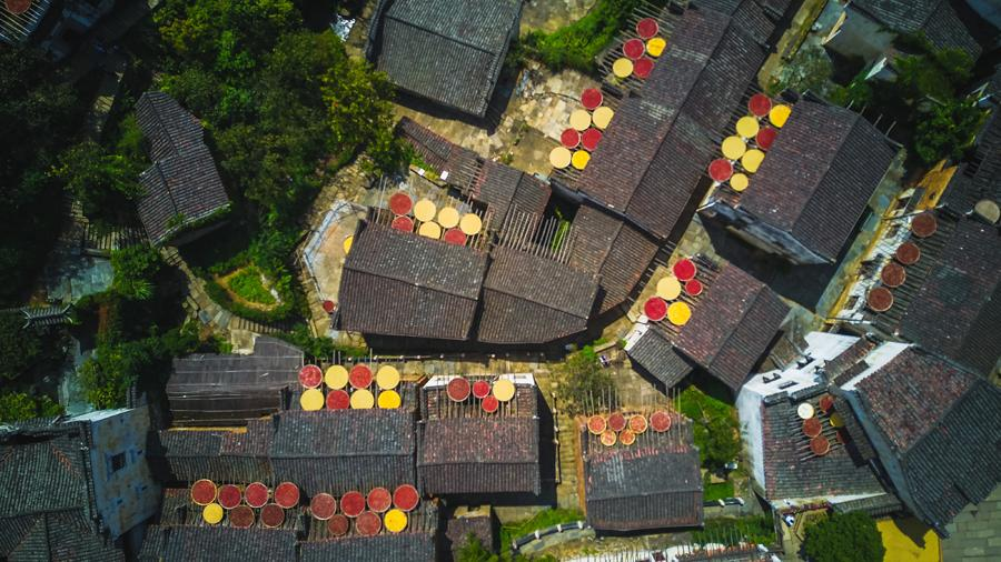 Huangling village in Wuyuan county, East China\'s Jiangxi Province, glitters with an autumn harvest glow, Sept. 15, 2018. (Photo/chinadaily.com.cn)