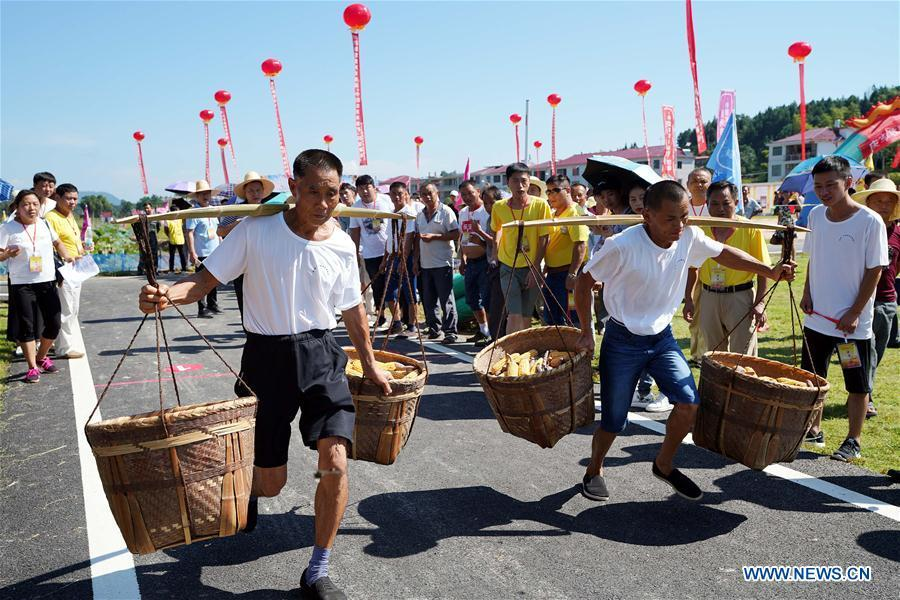 Farmers compete with each other to carry bundles of cereals in Nanfeng County, east China\'s Jiangxi Province, Sept. 19, 2018. Activities to celebrate China\'s first Farmers\' Harvest Festival were held at Modern Agricultural Demonstration Garden in Nanfeng County. (Xinhua/Song Zhenping)