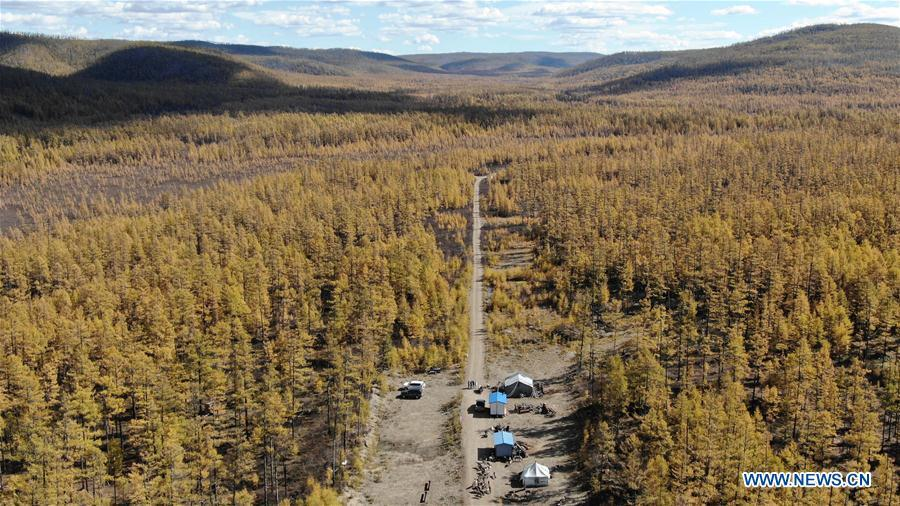 Photo taken on Sept. 18, 2018 shows the reindeer breeding base in Yue\'anli Forest Farm of Genhe forestry bureau in the Greater Khingan Mountains of north China\'s Inner Mongolia Autonomous Region. Staff members at Yue\'anli Forest Farm are responsible for the conservation and breeding work of reindeer in China. (Xinhua/Zou Yu)