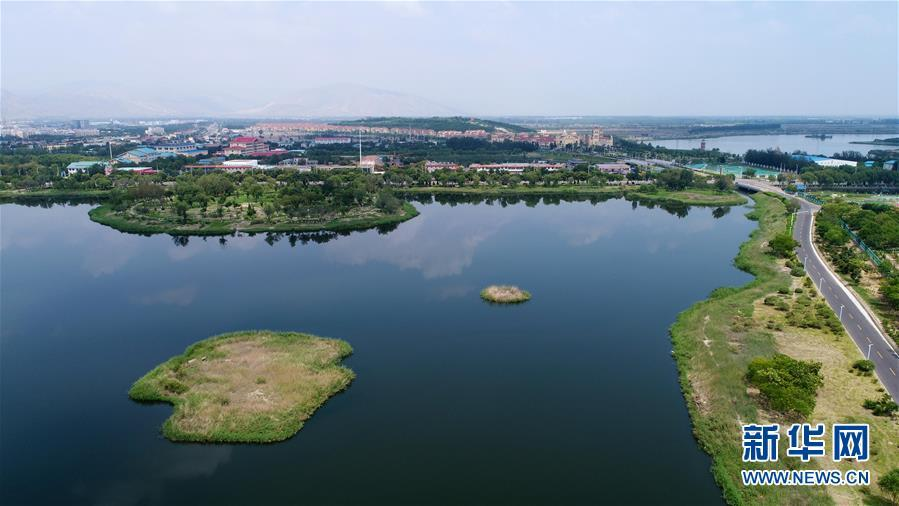 A photo taken July 31 shows Xinghai Lake in Shizuishan city, Ningxia Hui autonomous region. (Photo/Xinhua)
