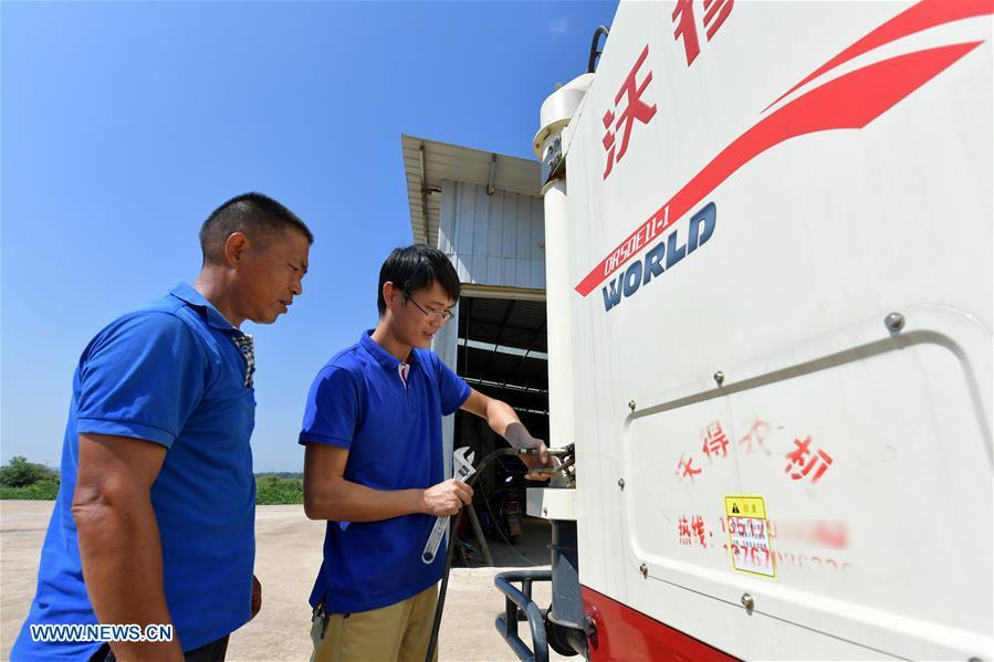 Zhou Xiaolin (L) and Zhou Biao check their combine harvester before work in Liutian Village of Xinjian District in Nanchang, east China\'s Jiangxi Province, Sept. 20, 2018. When every harvest season for middle-season rice begins in September, Zhou Xiaolin, a rice grower, and his son Zhou Biao will always offer help to other farmers with the harvest, because few families nearby own multiple farm machineries that suffice the workload. Born in Liutian Village, Zhou Xiaolin used to be a carpenter away from home. In 2005, he returned home to take on rice growing. Two years later, Zhou Xiaolin and Zhou Biao expanded the scale of their rice growing by contracting to take over the village\'s uncultivated croplands. To meet the increasing production demand, Zhou bought the first farm machine in the village. Currently, Zhou Xiaolin and Zhou Biao have nearly 50 hectares of farmland under cultivation in the village. Altogether they own two combine harvesters, two rice transplanters and a tractor, which have made production even more efficient. An increasing number of rice growers nearby have started to use Zhou Xiaolin\'s machines and services for a reasonable price. \