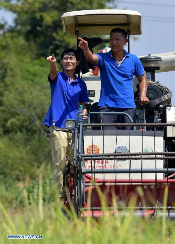 Zhou Xiaolin (R) and Zhou Biao help local farmers harvest rice in Shengmi Township of Xinjian District in Nanchang, east China\'s Jiangxi Province, Sept. 20, 2018. When every harvest season for middle-season rice begins in September, Zhou Xiaolin, a rice grower, and his son Zhou Biao will always offer help to other farmers with the harvest, because few families nearby own multiple farm machineries that suffice the workload. Born in Liutian Village, Zhou Xiaolin used to be a carpenter away from home. In 2005, he returned home to take on rice growing. Two years later, Zhou Xiaolin and Zhou Biao expanded the scale of their rice growing by contracting to take over the village\'s uncultivated croplands. To meet the increasing production demand, Zhou bought the first farm machine in the village. Currently, Zhou Xiaolin and Zhou Biao have nearly 50 hectares of farmland under cultivation in the village. Altogether they own two combine harvesters, two rice transplanters and a tractor, which have made production even more efficient. An increasing number of rice growers nearby have started to use Zhou Xiaolin\'s machines and services for a reasonable price. \
