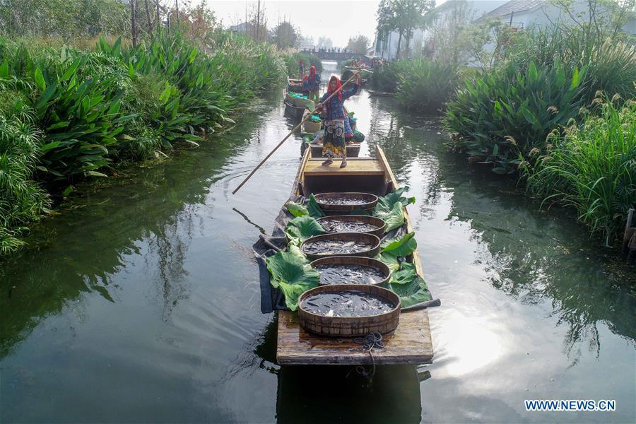 Villagers show specialty agricultural products during a floating market in Dongluo Village of Xinghua, east China\'s Jiangsu Province, Sept. 23, 2018. People across China hold various activities to celebrate the country\'s first Farmers\' Harvest Festival, which falls on Sept. 23 this year. (Xinhua/Tang Dehong)