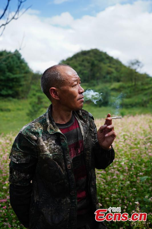 Liu Minghe, 48, smokes as he cuts open a tree to take sap, which is used to make a durable coating called lacquer, in Dafang County, Southwest China's Guizhou Province, Sept. 22, 2018. Liu said he earns about 30,000 yuan ($4,370) from April to September from the traditional craft. (Photo: China News Service/He Junyi)