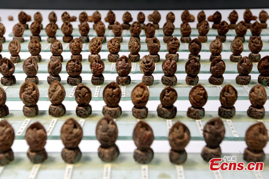 Cai Qingzhu's nut carvings featuring the 108 characters in the Chinese novel Water Margin is displayed at an exhibition in a museum in Xi'an City, Northwest China's Shaanxi Province, Sept. 25, 2018. It took Cai, 55, two years to finish the carvings. Nut carving, the miniature folk art of carving fruit and nut pits, has been practiced in China for centuries. (Photo: China News Service/Zhang Yuan)