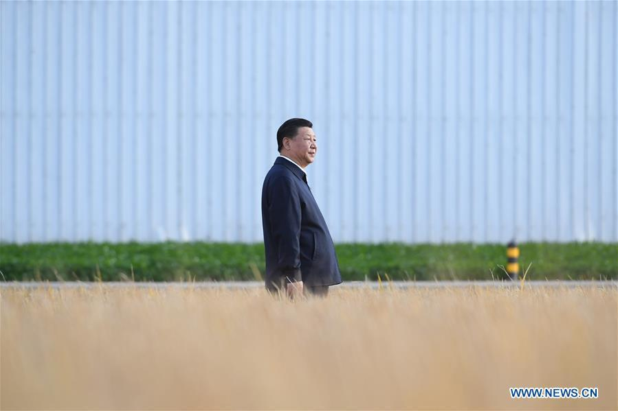 Chinese President Xi Jinping, also general secretary of the Communist Party of China (CPC) Central Committee and chairman of the Central Military Commission, visits the farms and land reclamation administrative bureau of Jiansanjiang, northeast China\'s Heilongjiang Province, Sept. 25, 2018. Xi started an inspection tour in Heilongjiang on Tuesday. (Xinhua/Yan Yan)