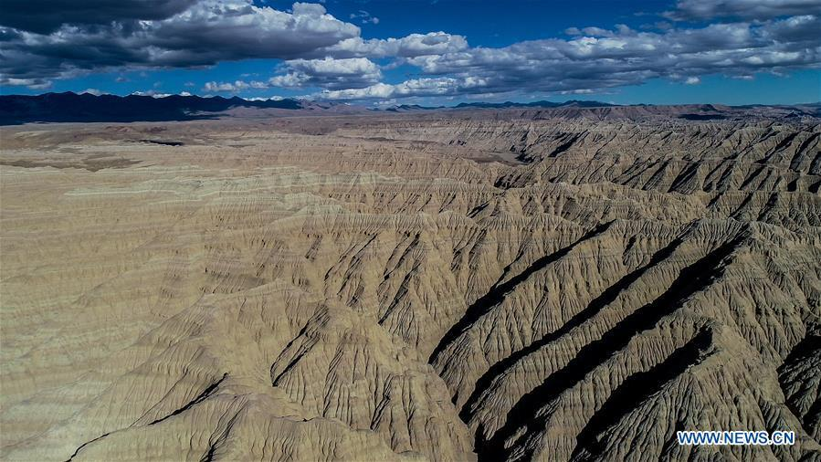 Aerial photo taken on Sept. 10, 2018 shows the scenery of earth forest in Ngari, southwest China\'s Tibet Autonomous Region. The earth forest is the sediment stratum of rivers and lakes in ancient times, formed by erosion of water. The Ngari area has an average altitude of over 4,000 meters above sea level. (Xinhua/Purbu Zhaxi)