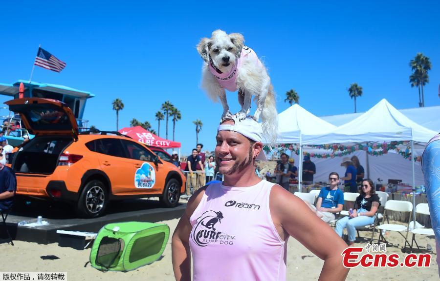 Surfer Ryan Thor poses with his Surf Dog Prince Dudeman during the 10th annual Surf City Surf Dog contest in Huntington Beach, California, Sept. 29, 2018. (Photo/Agencies)