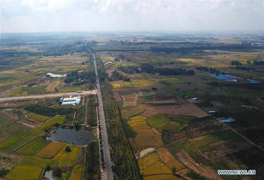 Aerial photo taken on Sept. 28, 2018 shows the rice fields of Xiaogang Village in Fengyang County, east China\'s Anhui Province. Xiaogang, known as cradle of China\'s rural reform, witnessed great change in the past 40 years. (Xinhua/Cai Yang)