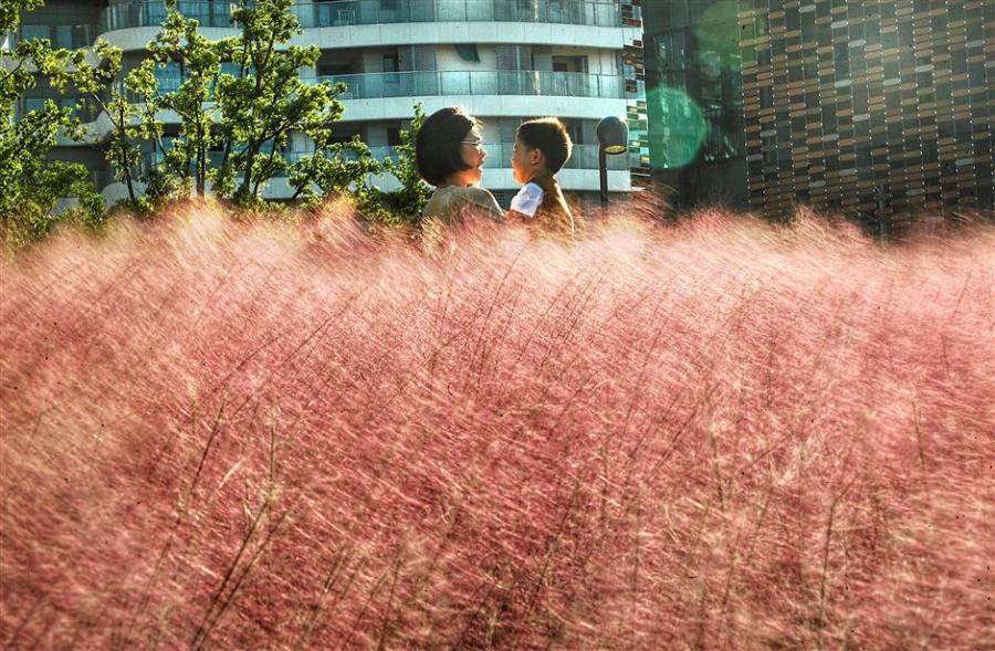 (Photo/Shine.cn)