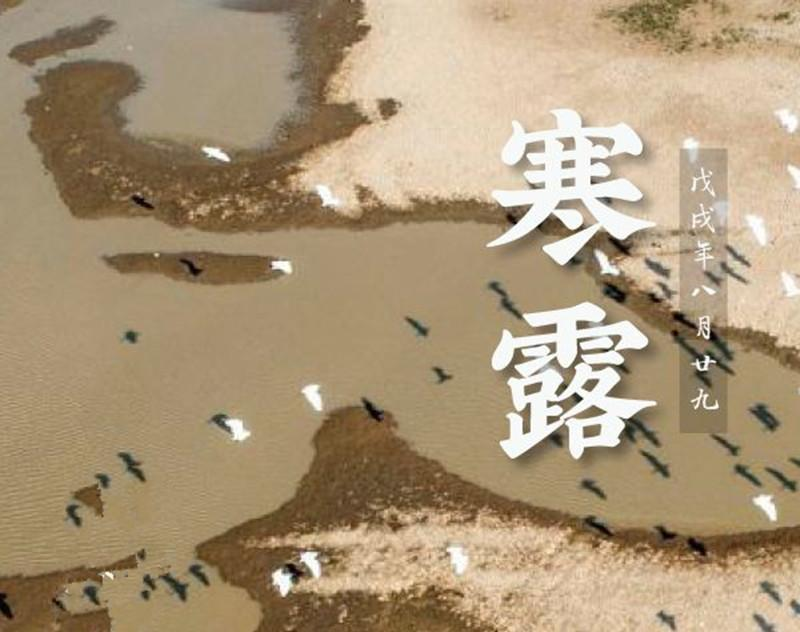 The traditional Chinese lunar calendar divides the year into 24 solar terms. Cold Dew, the 17th solar term of the year, begins this year on Oct 8 and ends on Oct 22 when temperatures fall and frost appears.(Photo/China News Service)