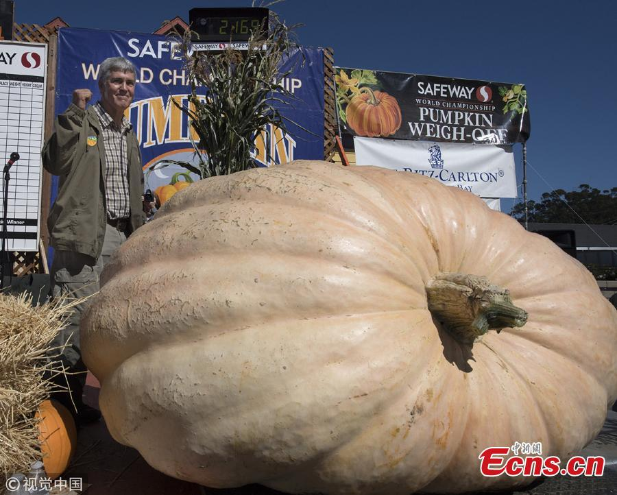 Steve Daletas of Pleasant Hill, Oregon waves to the crowd after winning the 45th Annual Safeway World Championship Pumpkin Weigh-Off in Half Moon Bay, California, Oct. 8, 2018. Daletas won the 45th Annual Safeway World Championship Pumpkin Weigh-Off with a pumpkin weighing 984 kilograms. (Photo/Agencies)