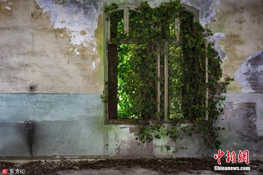 Photographer James Kerwin has spent his free time rediscovering forgotten buildings in the backlands of France, Italy and eastern Europe. Kerwin is part of a group of urban explorers who document abandoned structures, casting these dilapidated relics in a new light. These images of green-filled spaces show the inherent beauty of nature and its power to reclaim these man-made structures. (Photo/IC)
