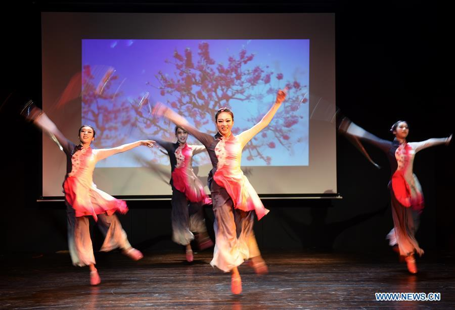 Members of the art troupe of the Beijing-based Capital University of Physical Education and Sports perform in Bogazici University of Istanbul, Turkey, on Oct. 9, 2018. A charm of Chinese Kung Fu tour started on Tuesday evening at Bogazici University in Istanbul, enchanting the audience with a mixture of Chinese martial arts and dances. (Xinhua/He Canling)