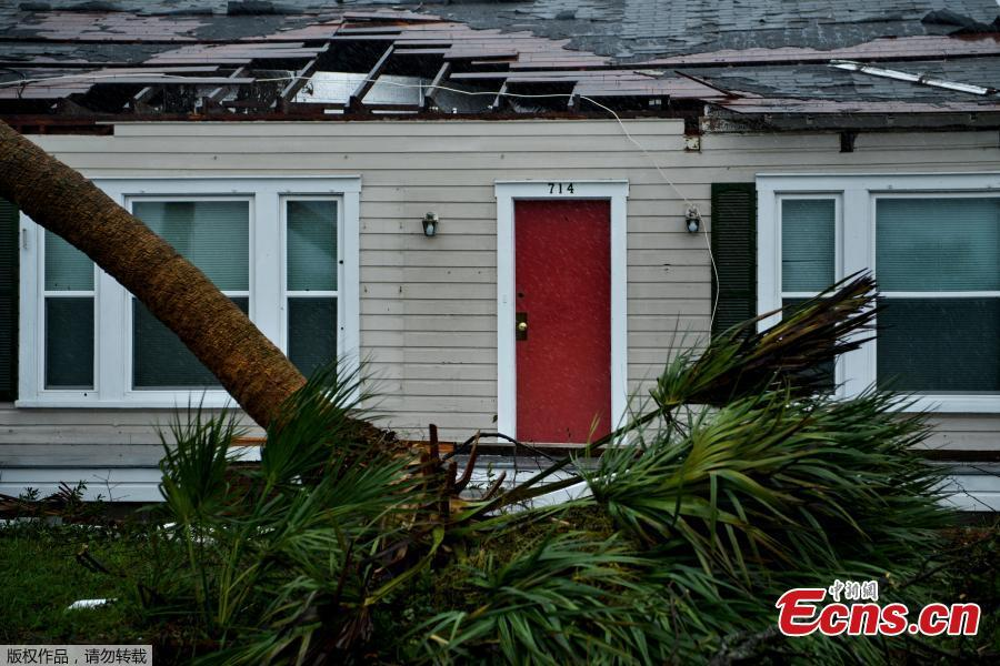 A house is seen with damage to its roof and downed trees during Hurricane Michael October 10, 2018 in Panama City, Florida. Michael slammed into the Florida coast on October 10 as the most powerful storm to hit the southern US state in more than a century as officials warned it could wreak \