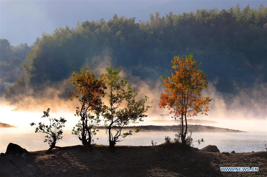 Photo taken on Oct. 11, 2018 shows an autumn scenery of the fog-enveloped Qishu Lake in Huangshan, east China\'s Anhui Province. (Xinhua/Shi Guangde)