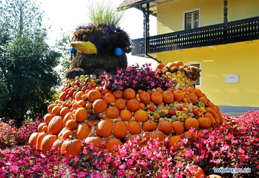 Colorful pumpkins are displayed during a funny pumpkin exhibition at a botanic park some 20 km away from Ljubljana, Slovenia, Oct. 13, 2018. A funny pumpkin exhibition was held there recently to celebrate the pumpkin harvest season. (Xinhua/Matic Stojs)