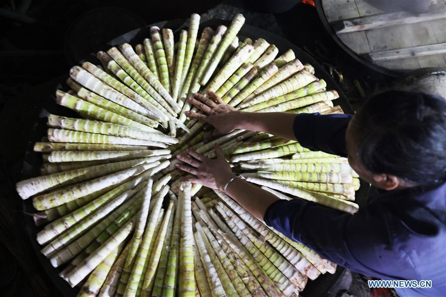A farmer processes shelled bamboo shoots in Lianhua Village of Baoyuan Township, Chishui, southwest China\'s Guizhou Province, Oct. 14, 2018. There are 1.32 million mu (0.88 million hectares) of bamboo forests in Chishui. The bamboo-related industry has become an income booster for the locals. (Xinhua/Wang Changyu)