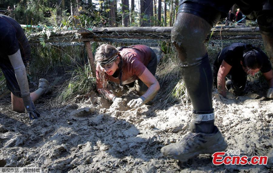 Participants compete during the \'Wild Boar Dirt Run\' (Wildsau Dirt Run) near Brand-Laaben, Austria, October 13, 2018. People took part in a hard obstacle course in three distances 5, 10 and 20 kilometers. (Photo/Agencies)