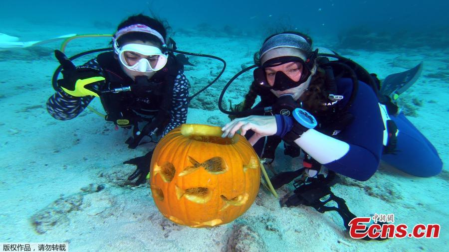 Contestants compete in the Underwater Pumpkin Carving Contest, staged by the Amoray Dive Resort off Key Largo, Florida, in the Florida Keys National Marine Sanctuary, Oct. 14, 2018. (Photo/Agencies)