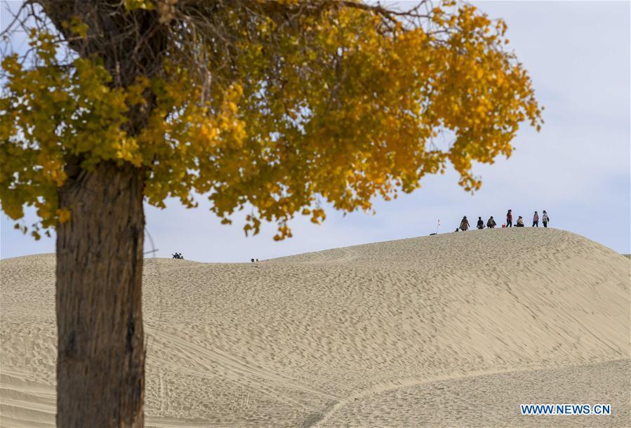 Tourists view scenery on a sand ridge in Lop Nur People Village of Yuli County, northwest China\'s Xinjiang Uygur Autonomous Region, Oct. 16, 2018. The Lop Nur people depended basically on fishing for livelihood and developed a distinct culture based on their special lifestyle. Located in Tarim basin, Yuli is known for its natural scenery and ethnic culture and keeps attracting numerous tourists from at home and abroad. From Oct. 1 to 16, 2018, Yuli County has received more than 230,000 visitors, with a year-on-year increase of 31.46 percent. (Xinhua/Zhao Ge)