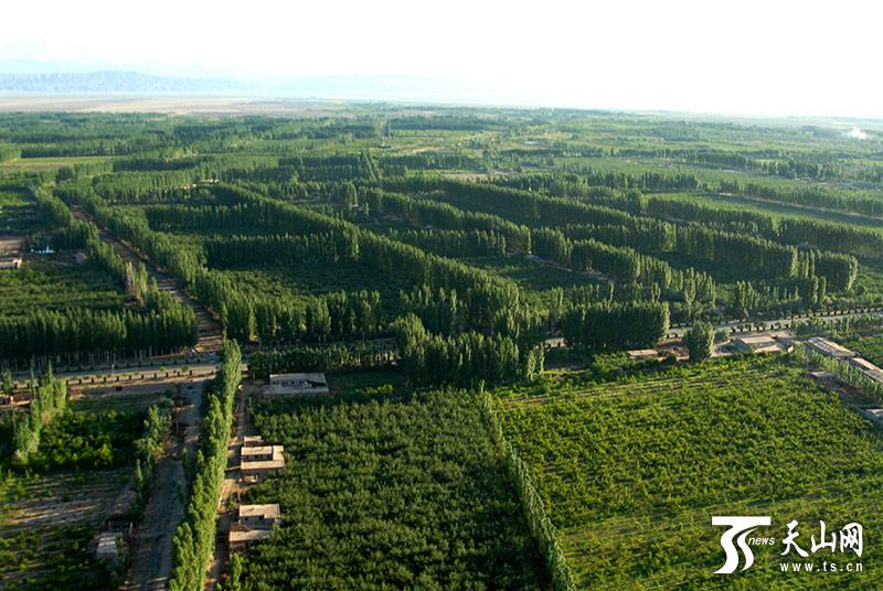 An aerial photo shows the Kekeya green project in Aksu, Northwest China\'s Xinjiang Uyghur autonomous region. (Photo/ts.cn)