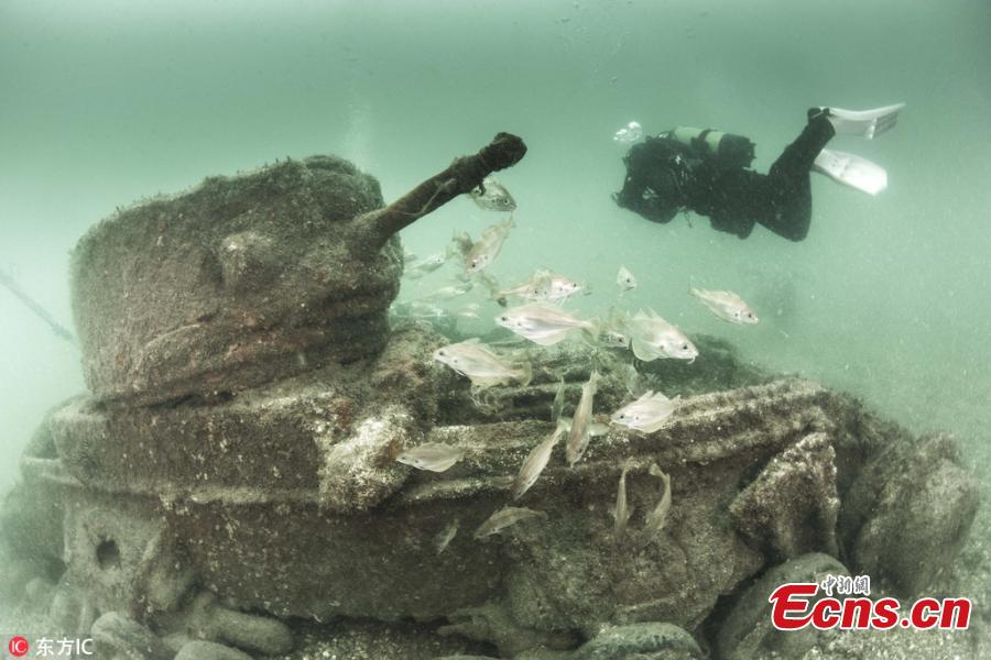 Photo taken by Paul Pettitt shows war tanks sunk during Operation Smash - a huge training exercise held on a Dorset beach in April 1944, just weeks ahead of the Normandy landings in 1944. Six lives were lost during the drill. Paul Pettitt, who photographed the wrecks with his wife Alison, said those pictures were done over the course of a whole summer. (Photo/IC)