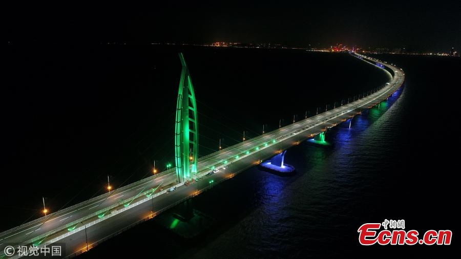 Jiuzhou channel bridge, part of the Hong Kong-Zhuhai-Macao Bridge. (Photo/VCG)