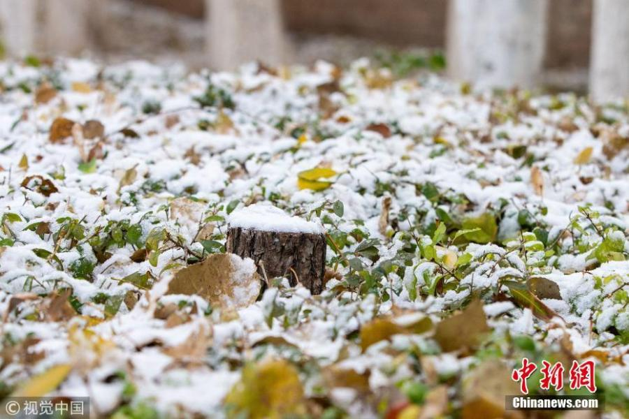The first snow before winter hits Changchun City, Northeast China's Jilin Province, Oct. 28, 2018. (Photo/VCG)
