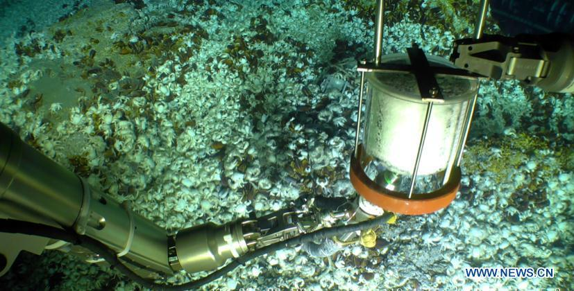 Photo taken on Oct. 9, 2018 shows Haixing 6000, one of China\'s underwater robots, during a research expedition. Haixing 6000 set a national depth record for a Chinese remotely operated vehicle, by diving 6,001 meters below sea surface during its first research expedition, scientists told Xinhua Sunday. Haixing 6000 was developed by a team at the Shenyang Institute of Automation under the Chinese Academy of Sciences. It is the first remotely operated underwater vehicle built by China that is capable of diving 6,000 meters, said Li Zhigang, chief scientist of the team. It reached a maximum depth of 6,001 meters, and completed a series of underwater tasks in three hours, including deep-sea observation, biological research, soil and water sample collection, and a simulative black box search. (Xinhua)