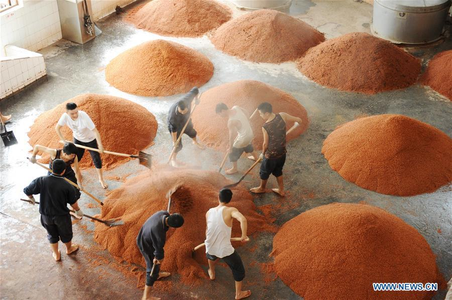 Workers process sorghum grains at a distillery of Kweichow Moutai in Maotai town in the city of Renhuai in southwest China\'s Guizhou Province, Oct. 23, 2018. Maotai is a small town in Renhuai City in mountainous Guizhou. What distinguishes it from other Chinese small towns is that it produces a famous brand of Chinese liquor Moutai, which often served on official occasions and at state banquets. The spirit, made from sorghum and wheat, takes up to five years for the whole production process, involving nine times of steaming, eight times of fermentation and seven times of distillation, before aged in clay pots. Moutai is also considered a luxury item that has long been a popular gift. China\'s alcohol industry earned about 1 trillion yuan in revenue in 2017. The total profits rose by 36 percent year on year to over 100 billion yuan, according to China National Light Industry Council. (Xinhua/Yang Wenbin)