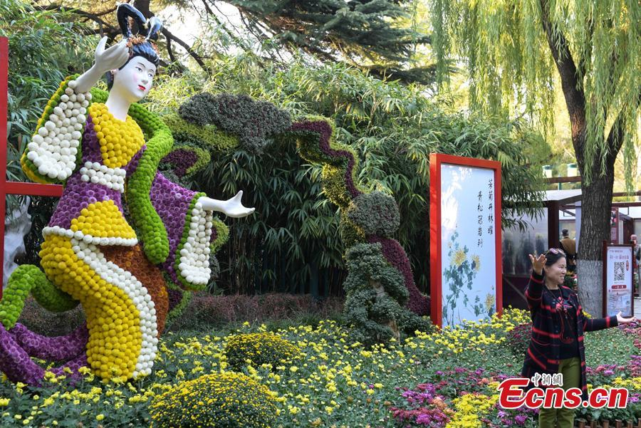 The 39th Baotu Spring Chrysanthemum Flower Festival opens in Jinan, East China\'s Shandong Province, Oct. 30, 2018. The fair showcases approximately 100,000 pots of chrysanthemum. The Baotu Spring is a culturally significant artesian karst spring in the city. (Photo: China News Service/Zhang Yong)