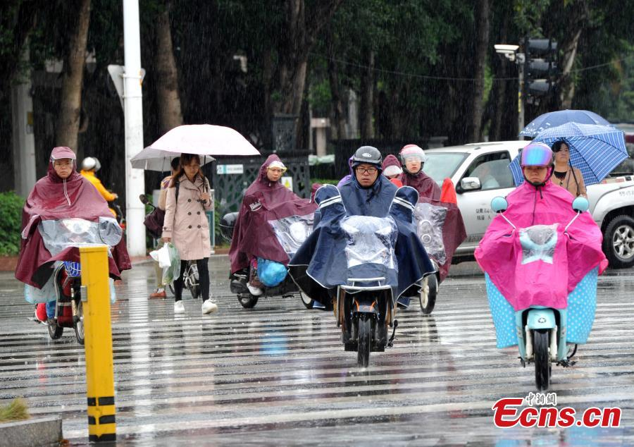 People walk in rain in Fuzhou, southeast China\'s Fujian province on November 2, 2018. According to the provincial meteorological center, as of 5 a.m., Yutu was located about 355 kilometers ofthe coast of Fujian\'s Dongshan county. (Photo: China News Service/ Zhang Bin)