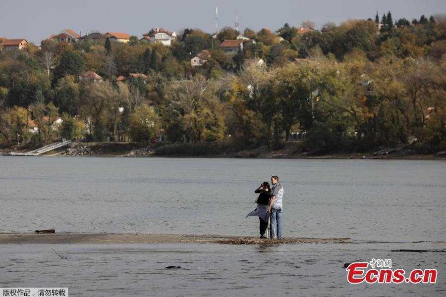 A couple stands on sandbanks which emerged amid Danube River\'s lowest water levels this year, in Novi Sad, Serbia, October 30, 2018. Picture taken October 30, 2018. (Photo/Agencies)