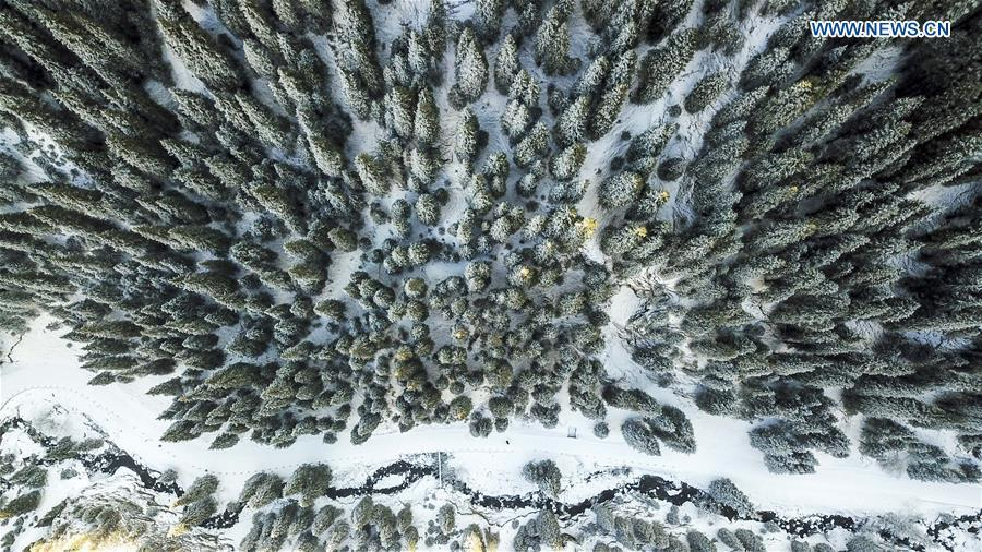 Aerial photo taken on Nov. 4, 2018 shows snow scenery in Nanshan scenic spot in southern Urumqi, capital of northwest China\'s Xinjiang Uygur Autonomous Region. (Xinhua/Hu Huhu)