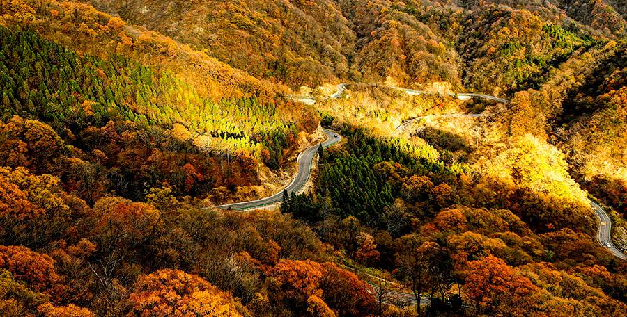 An autumn view of the Mazongling National Nature Reserve, Jinzhai county, Anhui Province, Nov. 14, 2018.(Photo/Asianewsphoto)