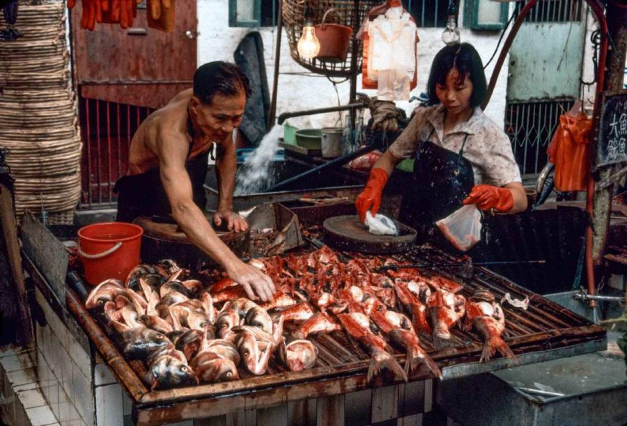 <?php echo strip_tags(addslashes(Guangzhou Qingping market, near Shamian Island. (Photo by Jamie Fouss/provided to chinadaily.com.cn))) ?>