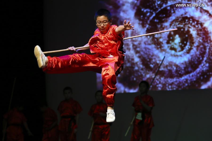A martial arts student performs during \