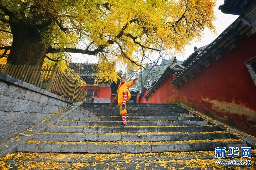 A monk practices martial arts under autumn leaves at the Shaolin Temple, located at the foot of Songshan Mountain, Henan Province, November 11, 2018. (Photo/Xinhua)